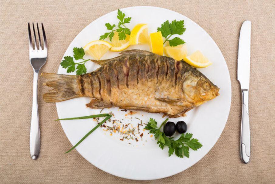 fish-protein